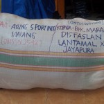 Kirim Warepack ke Lantamal X Jayapura Papua